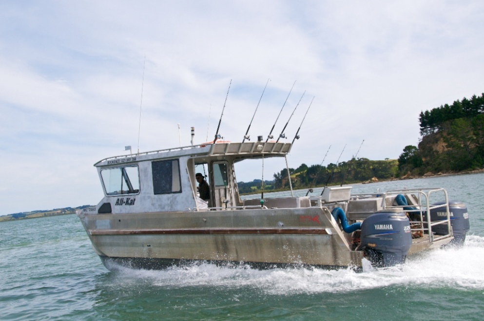 Ali kat charters fishing charters marine directory for Fishing charters auckland