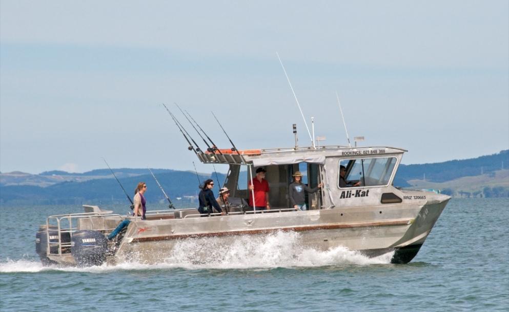 Ali kat charters fishing charters marine directory for Fishing boat trips