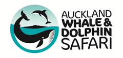 Auckland Whale and Dolphin Safari (AWADS) – Auckland Charter Boats, Dolphin and Whale Watching