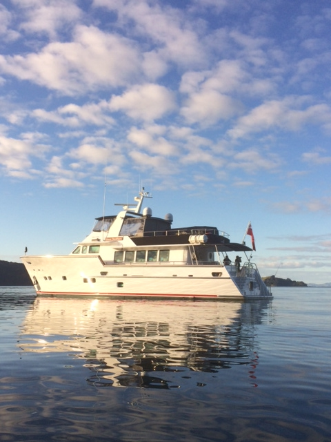 Great southern luxury charter boat auckland marine for Fishing charters auckland